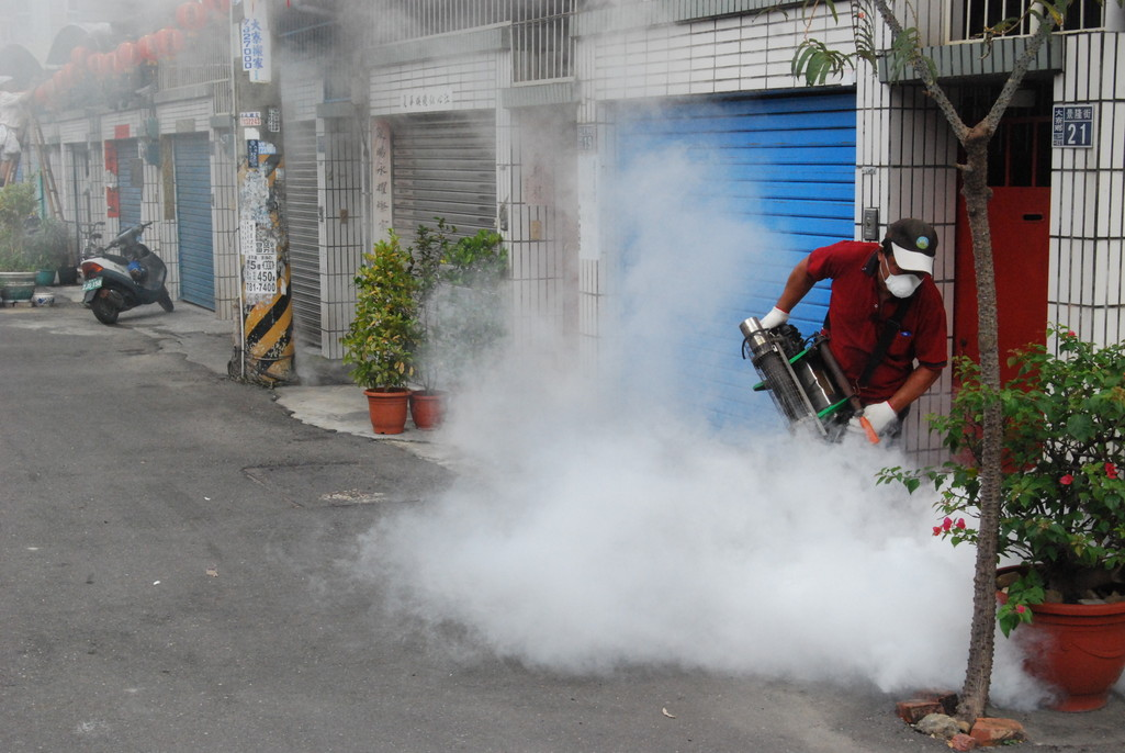 Dengue Fever Prevention